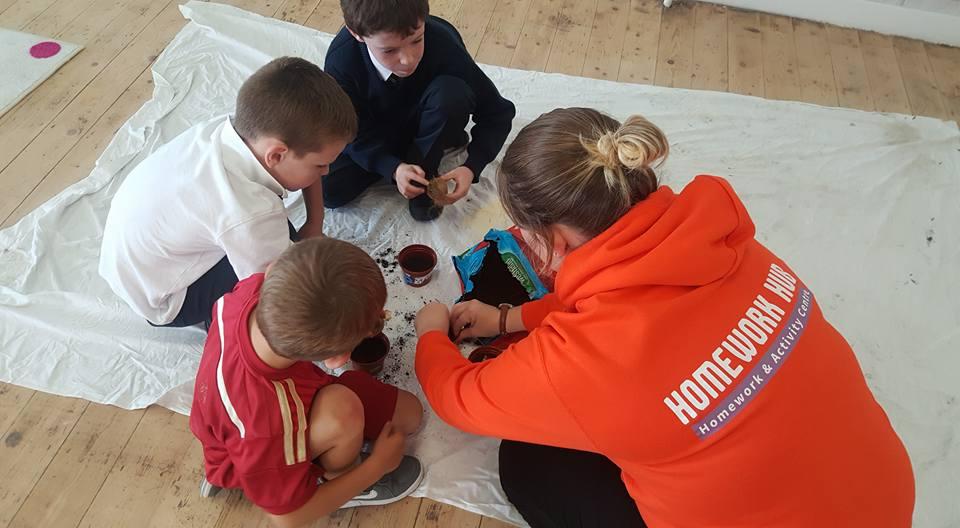 Planting Flowers | Activities at Homework Hub
